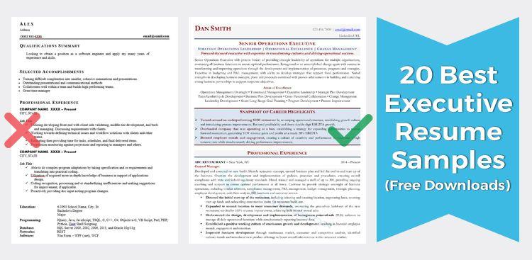 Executive Resume Samples (Director, VP, & C-Level)