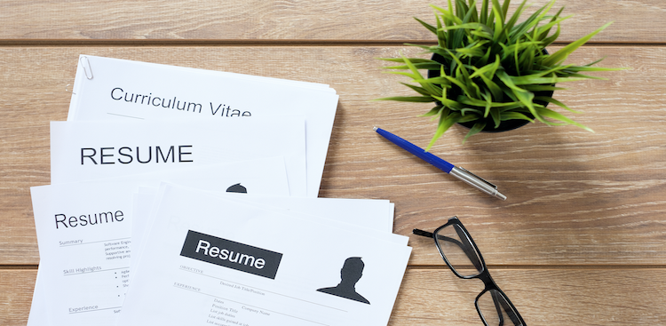 The 5 Best Resume Formats in 2021 [Tips & Samples]