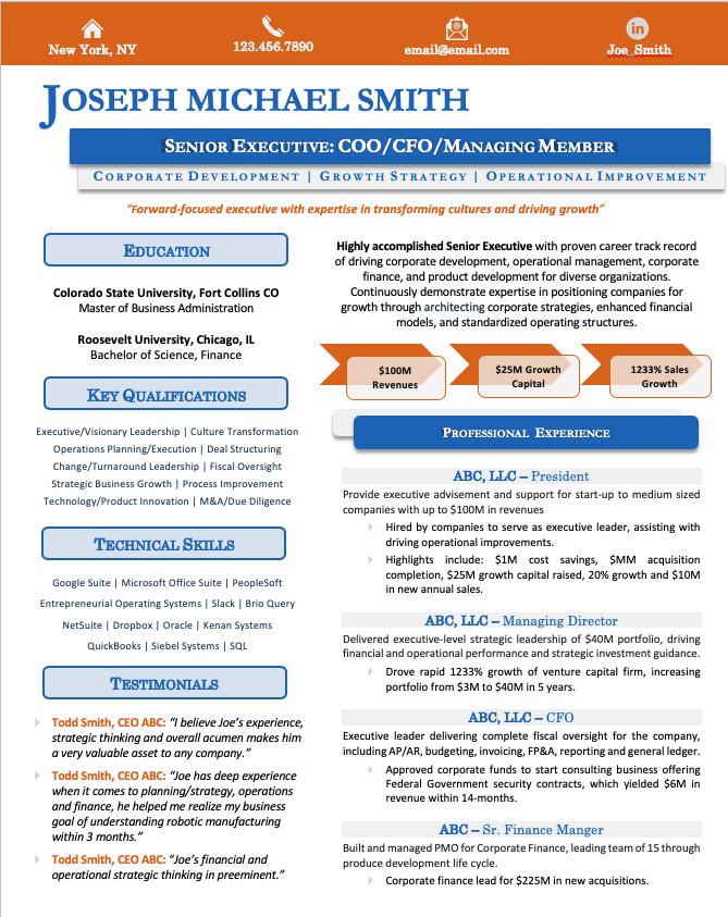 Infographic Resume Sample