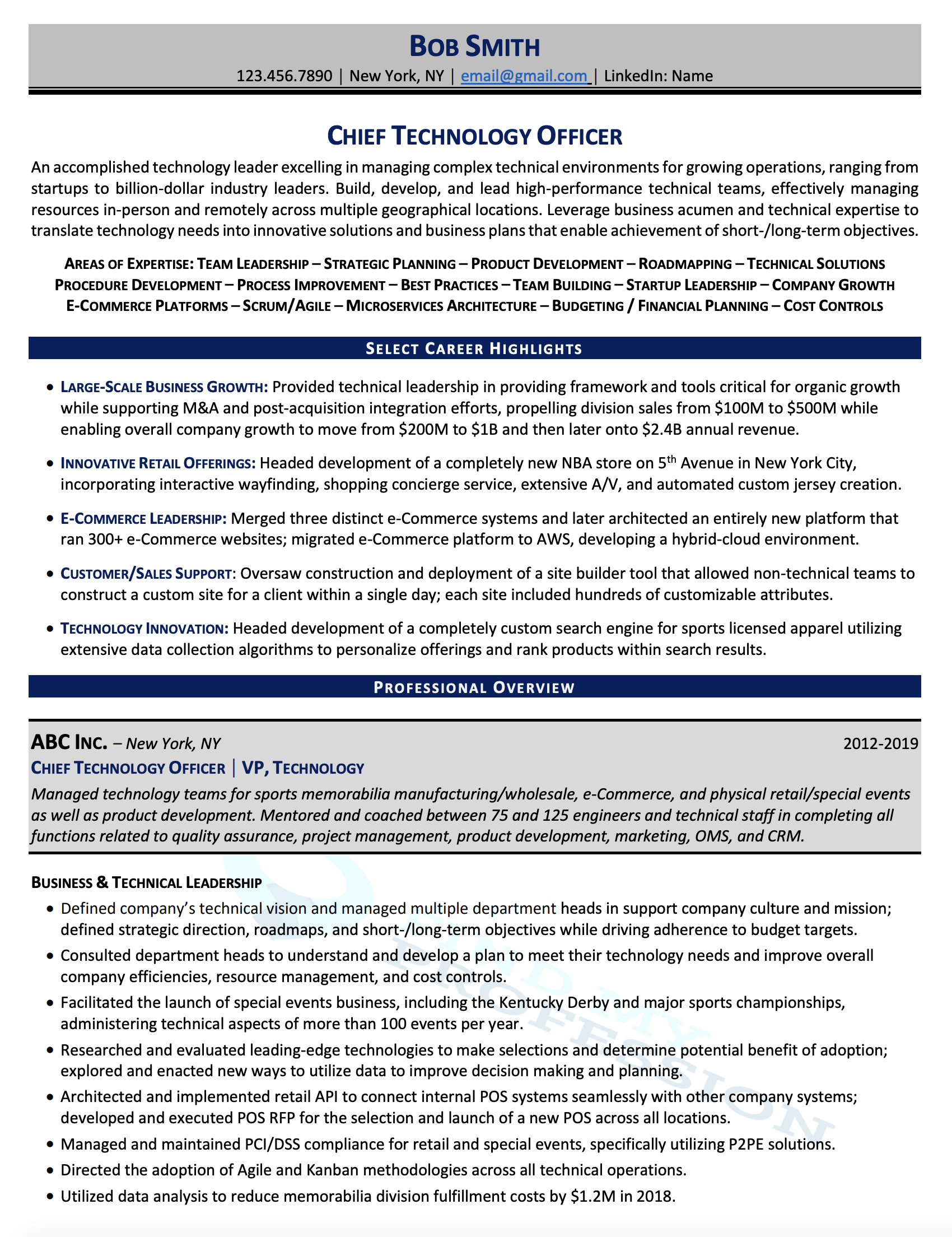 Chief Technology Officer (CTO) Resume Sample