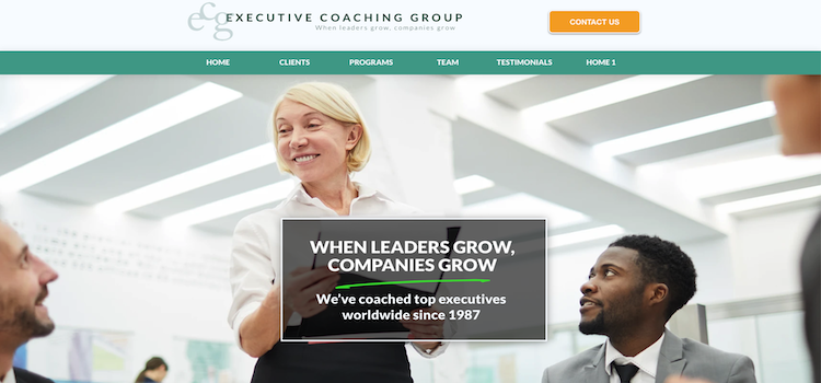 Executive Coaching Group - Best NYC Career Coach