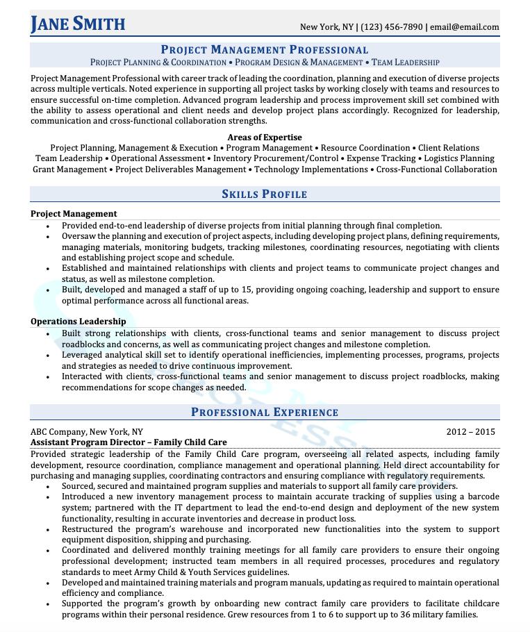 Combination Resume Format Sample
