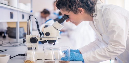 5 Best Biotech Resume Writing Services